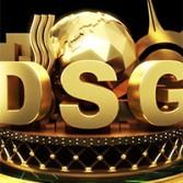 dsg_object