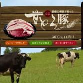 ビージョイ「牛たちのウワサ」篇